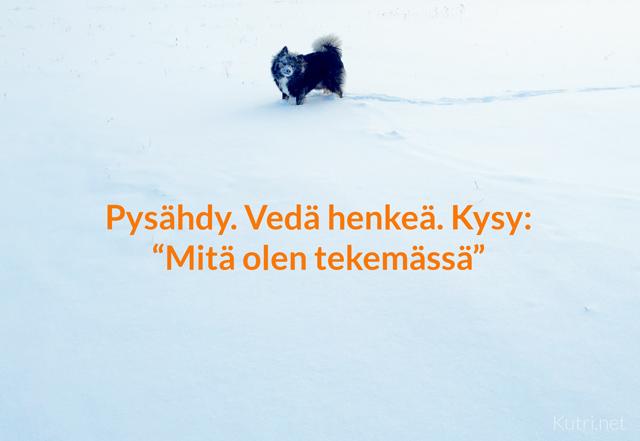 vedahenkea1